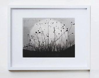 Moonrise, Charmed Meadow, etching, moon print