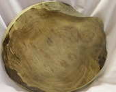 Large Wood Slice - Myrtle