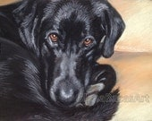 """CUSTOM  PET Portrait, Dog,Cat,Horse Painting 9""""x12"""" by Olena Baca Gift for Dad, Gift for Mom"""