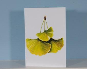Ginkgo Leaf Note Card