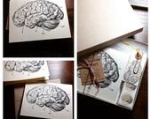 Brain Stationary Card Set - Set of 8 - Neuroscience, Science, Psychology Stationary