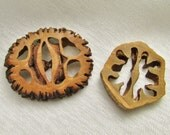 Nutty Buttons: Vintage Walnut Shell and Hickory Nut Shell Buttons - Treasury Item