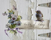 etsy banner pansy, chipped barnwood, baby bird six piece etsy shop design