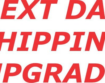Next Day Rush Upgraded Shipping - Next Day Air - Get it in time!