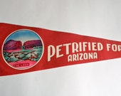 Vintage Pennant Petrified Forest Arizona  Souvenir Pennant 1960s
