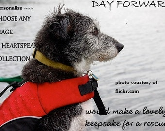 rescue ...day forward  ( a best friend's song ) celebrating a journey cards/sentimental cards/unique empathy condolence cards