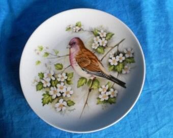 SALE  Kaiser Bird Plate. Was 15.00