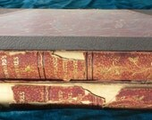 antique books, John L. Stoddard's lectures, 1898, two volumes, tattered leather spines, from Diz Has Neat Stuff