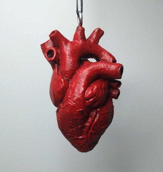 anatomical human heart ornament, Human Body
