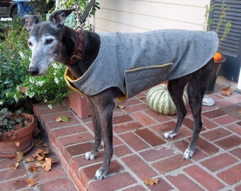 Greyhound Dog Coat, XL Jacket, Black and White Cotton Flannel Houndstooth with Gold Fleece Lining