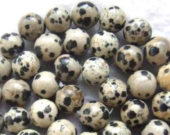 46 Dalmatian JASPER Gemstone Beads 8mm - COD3304