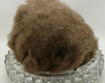 Muskox - Qiviut - Worlds most luxurious fiber - 12 micron - 1/2 Ounce