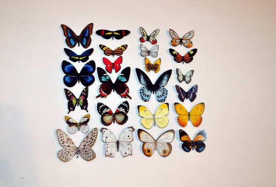 Butterfly Magnets Set of 24 Insects Refrigerator Magnets Handmade Home Decor Multi Color