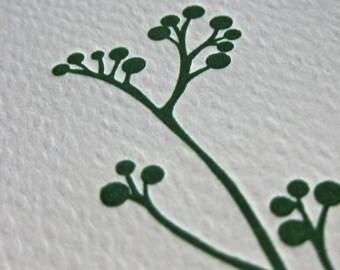 Set of 6 Letterpress Cards, Branch Design, Green