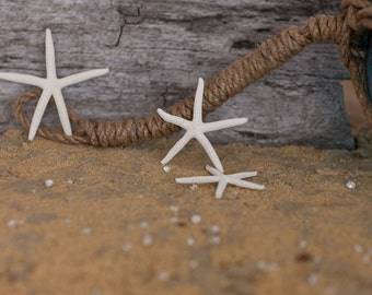 "Beach Decor Starfish - Nautical Decor White Finger Starfish - Natural Pencil Starfish 12 pcs. - 3""-4"""