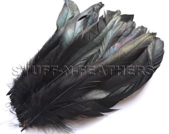 IRIDESCENT Black rooster tail feathers, coque feathers strung, long black feather for millinery, crafts / 9.5-12 in (24-30cm) long / F56-9.5