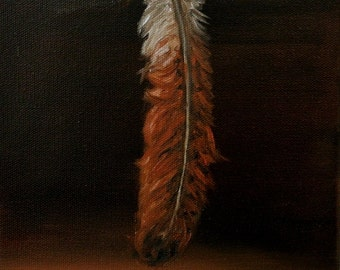 Redtail Hawk Feather
