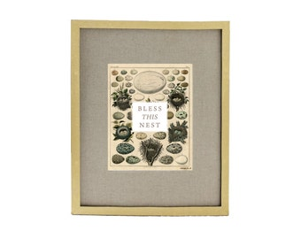 Bless This Nest Vintage Egg and Nest Collage Art Print