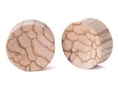 """7/8"""" Pair Monkey Ladder Wood Concave Plugs - Dunnygun Body Piercing Jewelry Gauge Earrings"""