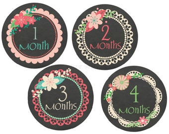 Baby Monthly Stickers Baby Month Stickers Baby Monthly Stickers Baby Sticker Girl Baby Shower Gift Baby Milestone Stickers Chalkboard