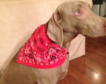 Dog Bandanna Scarf Red