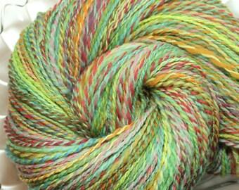 Handspun Yarn - Spring Forward - Falkland Wool, DK weight, 465 Yards.
