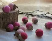 Wool Felt Acorns - Valentine's Day