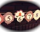 12 month picture banner newborn to one year Thanksgiving birthday banner Thanksgiving turkey party
