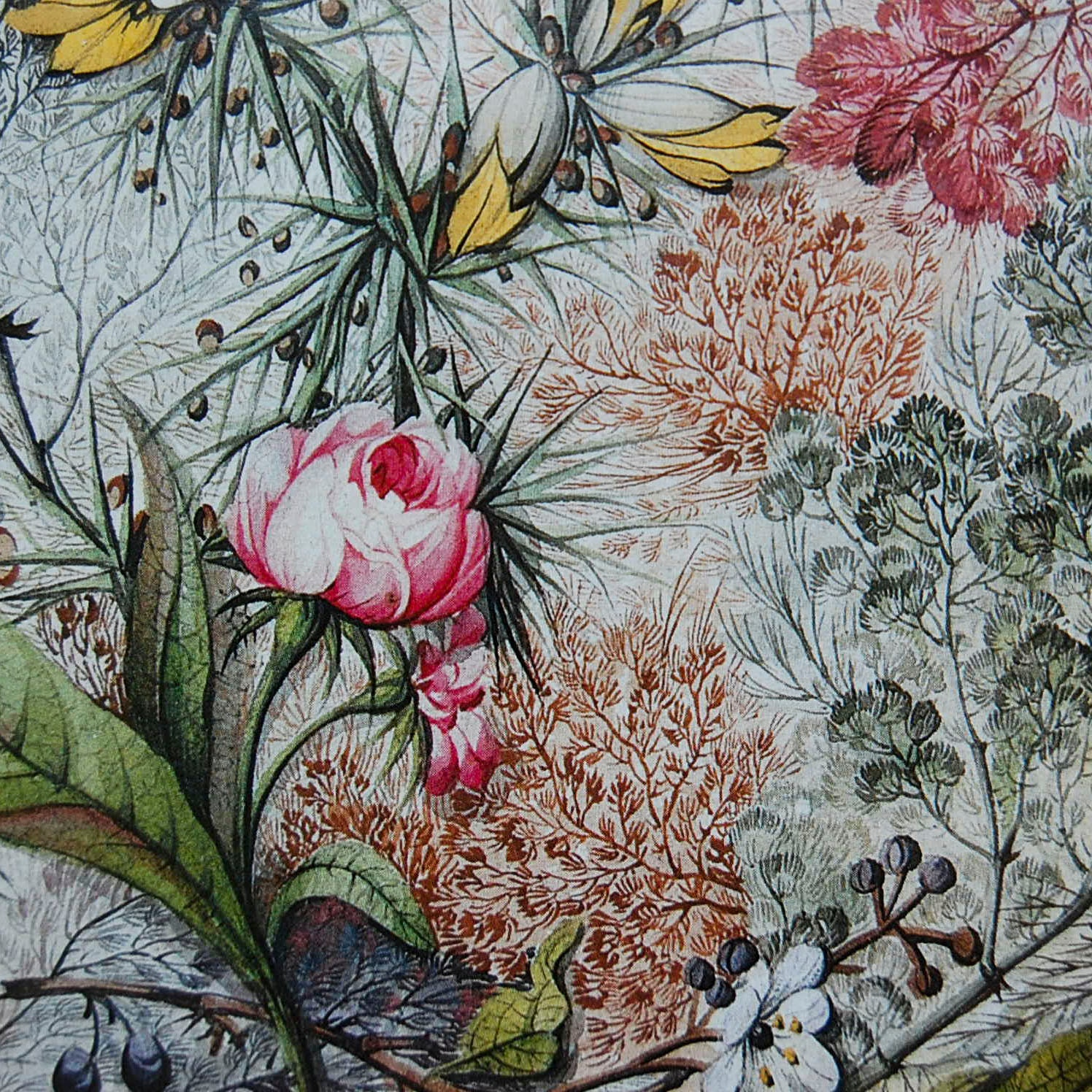 Vintage Flower Shop Names: Vintage French Country Flowers Decoupage Paper Wrapping