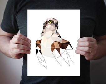 B22 - Geometric bird art print  - Osprey