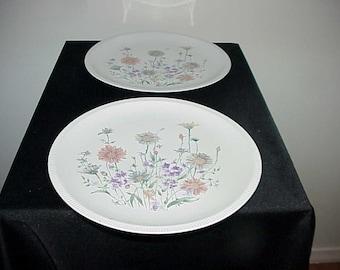 2 Ridgewood China RDG2 Dinner Plates