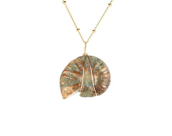 Opal necklace - fossil necklace - ammonite necklace - shell necklace - an opalized ammonite wire wrapped onto a 14k gold vermeil chain - AM9