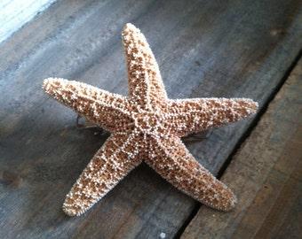 Starfish Barrette - Starfish Hair Clip - Hair Clip - Mermaid Hair Clip, Beach Wedding