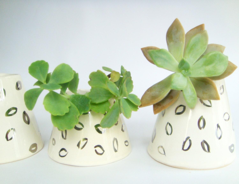 Three Small White Ceramic Planters White Ceramic By Bininaor