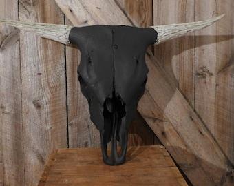 Highlander Bull Skull.