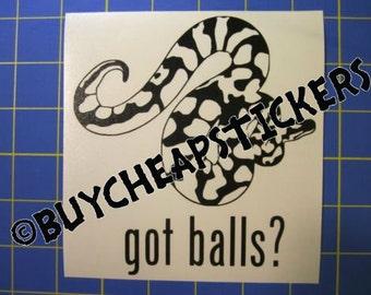Ball Python Snake Decal/Sticker Got Balls? 5X5