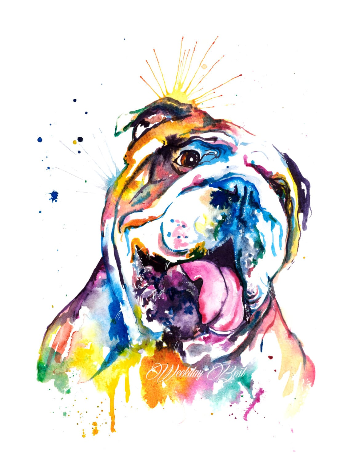 bulldog artwork colorful english bulldog art print print of my original 8416