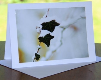 photographic greeting cards,photo cards,photographic cards,christmas cards,handmade,winter cards,xmas cards,woodland,fall,holiday,new year