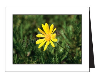 Yellow Flower Notecards