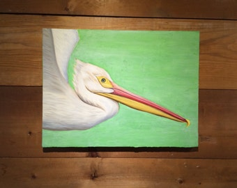 Flying pelican on green background