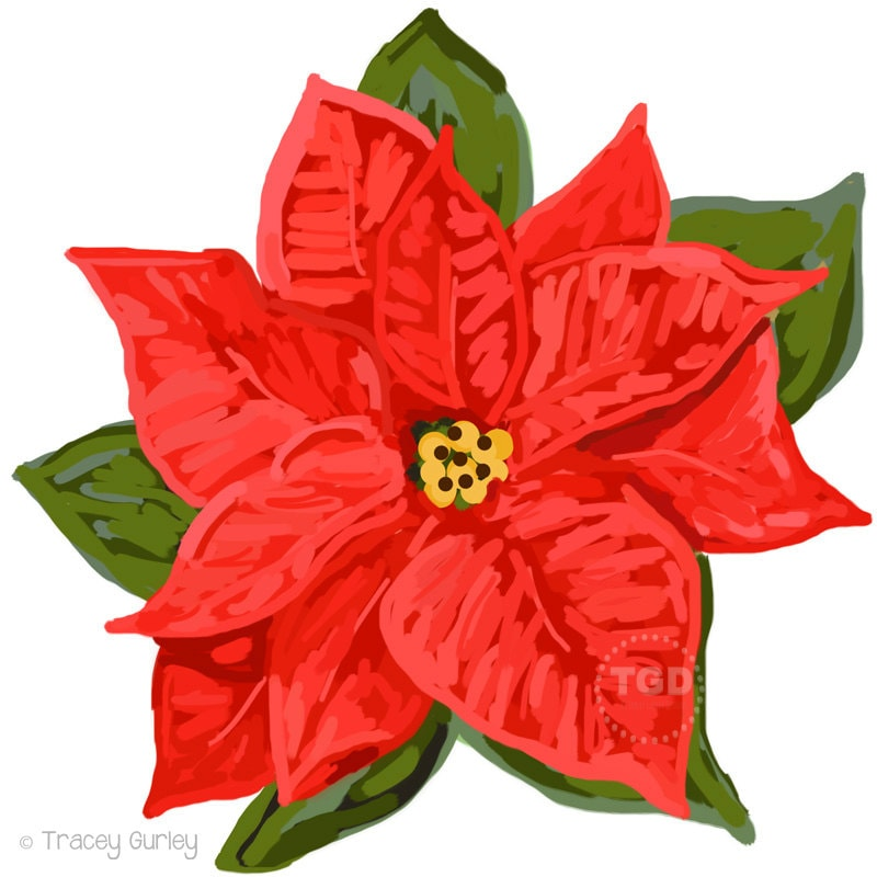Clip Art Poinsettia Clip Art red poinsettia clip art clipart by traceygurleydesigns