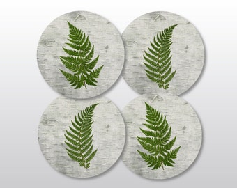 Botanical Coaster Set - Ferns on Birch Bark - Rustic Home or Cabin Decor - Cottage Chic Drink Coasters - Nature Lover Gift
