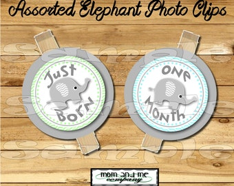Baby Boy First year photo clip banner newborn to 12 months first birthday month banner first year banner Elephant birthday RIBBON INCLUDED