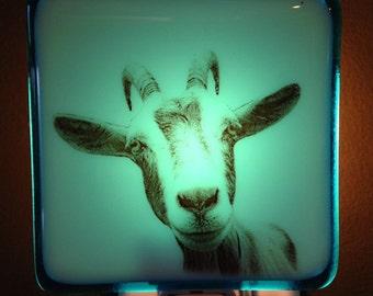 Baby Goat Night Light Fused Glass