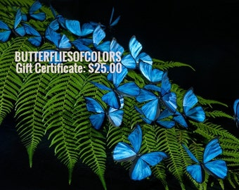 Gift Certificate for Butterfliesofcolors