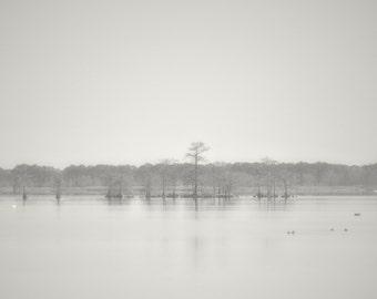 December Morning in Black & White - Lake Mattamuskeet NC - Fine Art Photography
