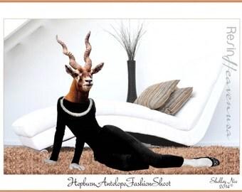 Animal Art, Antelope Giclee, Animal Fashion Shoot Print, Original Art, Anthropomorphic Prints, ResinHeavenUSA