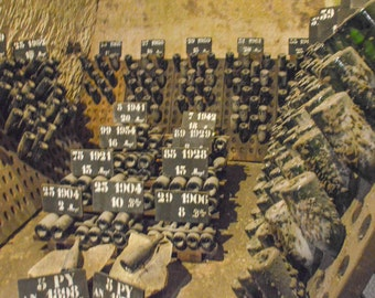 Champagne, France bottle storage