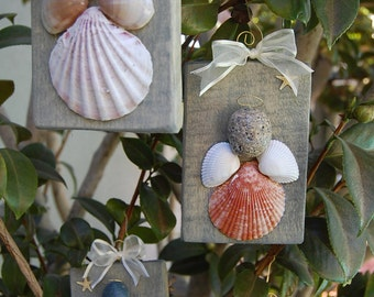 Sea Shell Angel