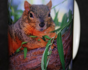 Diva Squirrel Mug! Stevie was a  releasable rescue squirrel who is just beautiful and gentle!